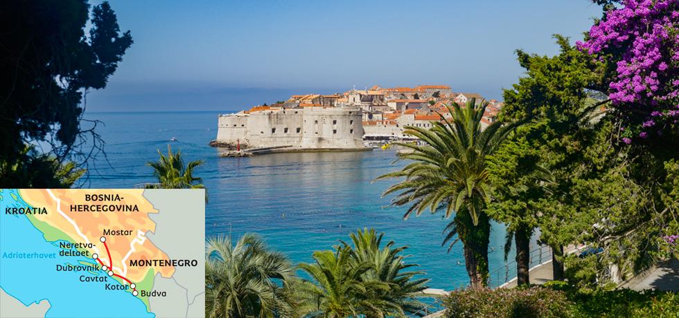 2017_albatros_kroatia_for_livsnytere_2
